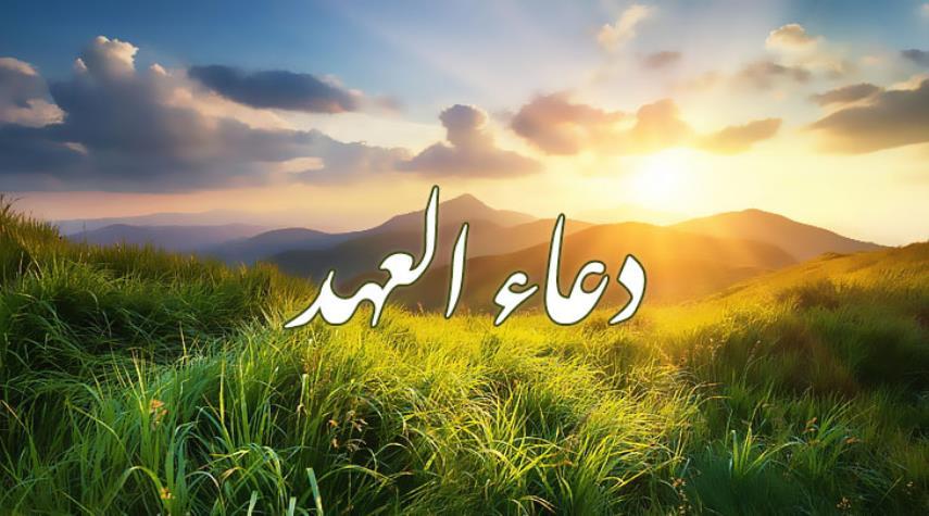 دعاء العهد.. دعاء انصار الإمام المهدي (عج)